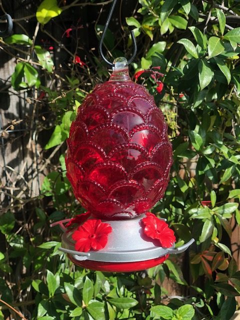 Glass Hummingbird Feeders by Ultimate Innovations