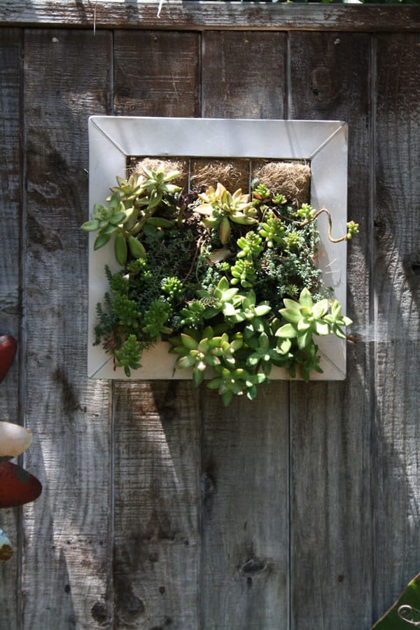 Mini Vertical Planter By Ultimate Innovations Ultimate Innovations