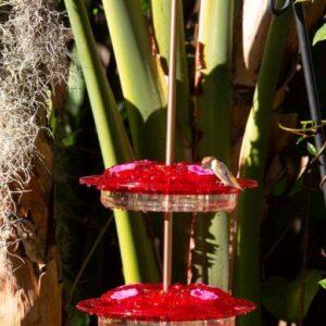 Stackable Hummingbird Feeders by ShopDePalma