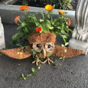 Owl Coco Planter by ShopDepalma