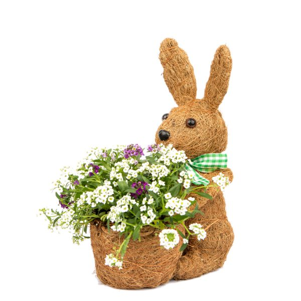 Spring Bunny Coco Planter by ShopDePalma