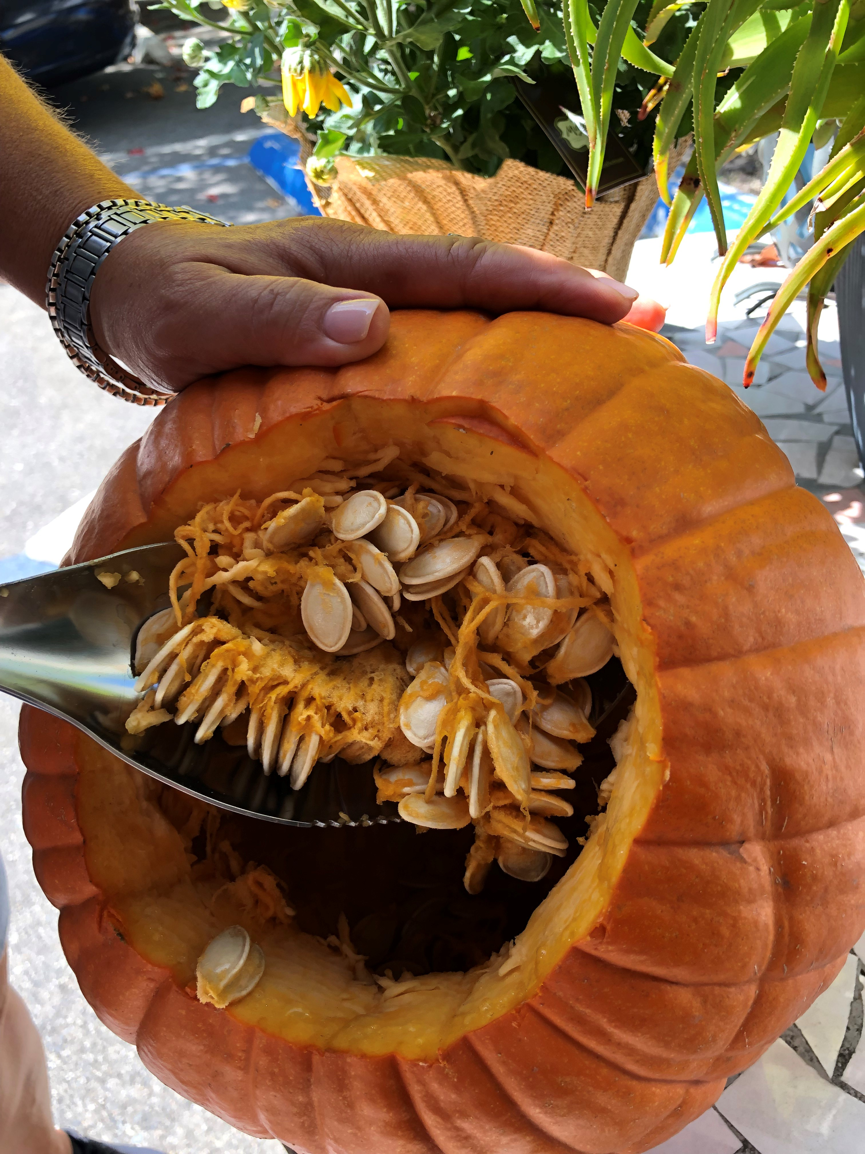 Roxanne DePalma using the Dirty Little Digger in a pumpkin